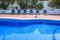 IMG_43142 Villa in El Portet - Pedro