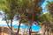 IMG_43145 Villa in El Portet - Pedro